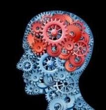 Des anomalies génétiques communes dans cinq troubles mentaux
