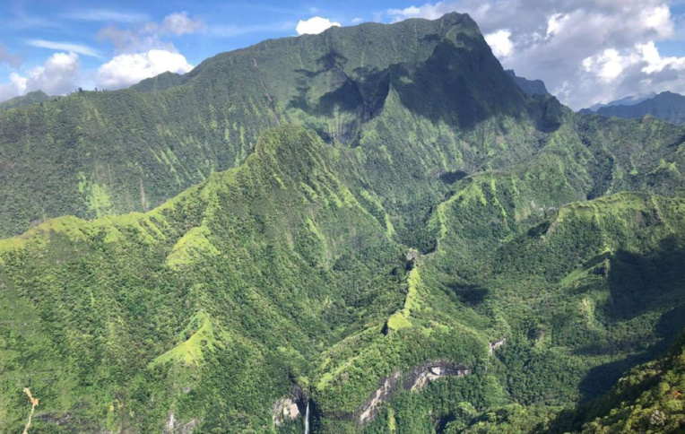 114 millions pour deux appels à projet en faveur de la biodiversité