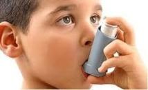14% des cas d'asthme chez l'enfant liés à la pollution automobile