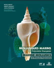 Plus de 3 000 mollusques marins référencés dans un livre hors-norme