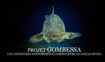 Plongée scientifique à la rencontre du mythique coelacanthe