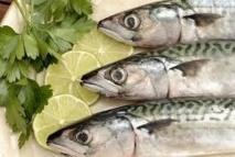 Manger du poisson prolonge l'espérance de vie des personnes plus âgées