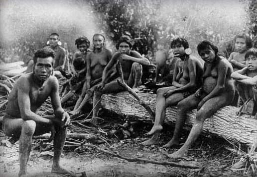 La génétique au service de l'histoire : les Amérindiens aux ancêtres polynésiens