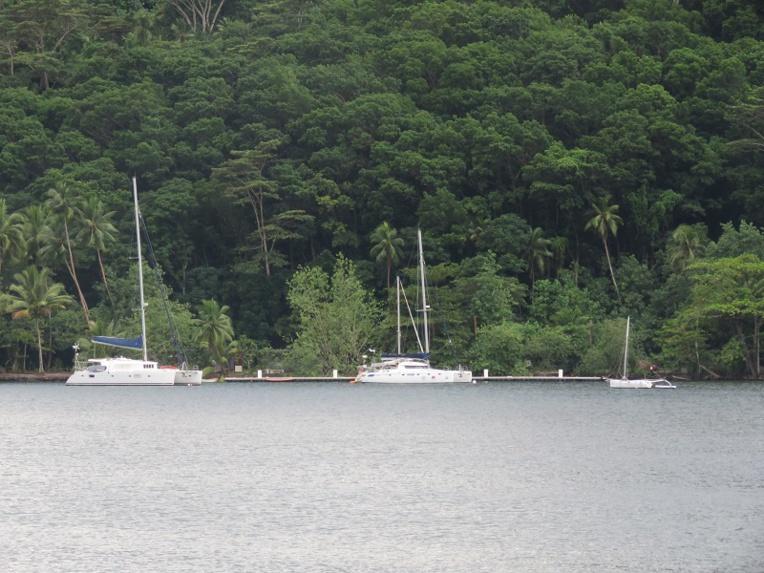 La gestion de la baie de Opunohu inquiète l'association Paruru Ia Opunohu