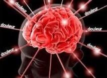 L'expression de la douleur observée dans le cerveau avec un scanner