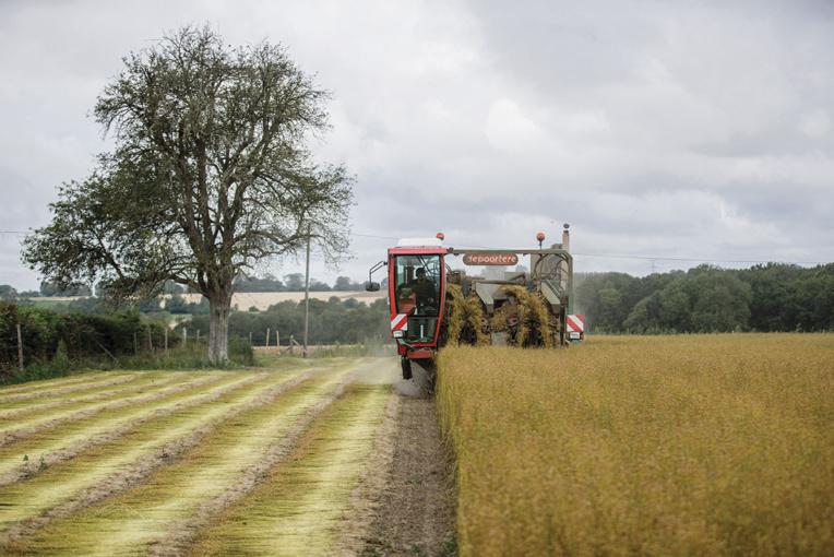 Pesticides: des tumeurs cérébrales d'agriculteurs peu à peu reconnues maladie professionnelle