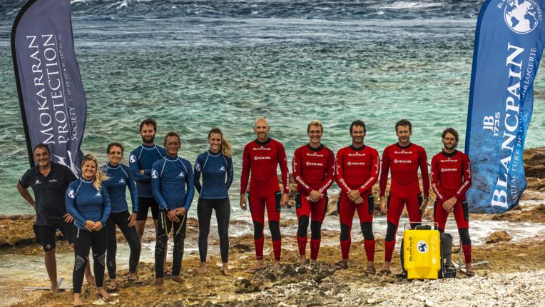 L'équipe de l'association Mokarran Protection Society à gauche et l'Expédition Gombessa de Laurent Ballesta.