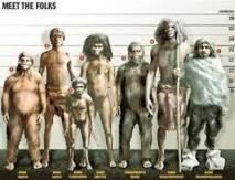 """Les """"petits hommes"""" de Florès, devenus nains pour mieux survivre?"""