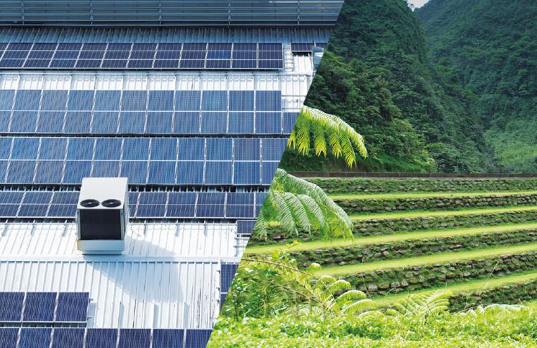 La part du renouvelable dans le mix énergétique toujours en repli en 2019