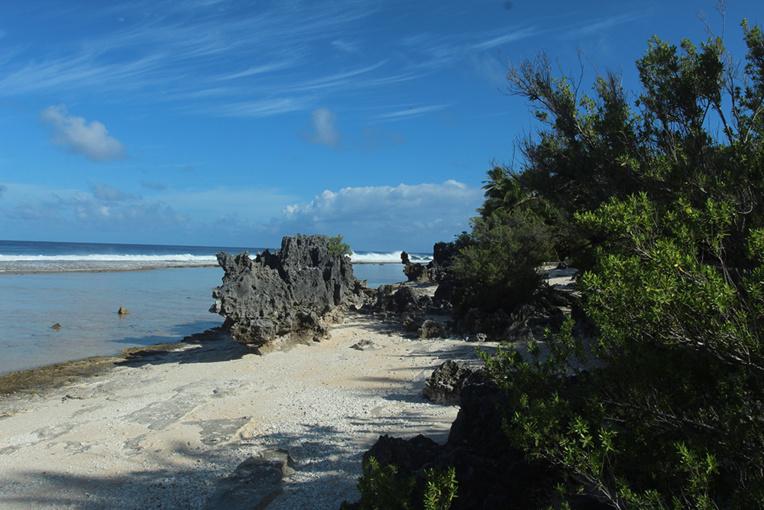 La barrière surélevée de Tikehau culmine ici, à dix mètres au-dessus du sol.