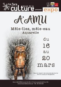 """""""Mêle-îles, Mêle-eau"""", la rétrospective de A'amu"""