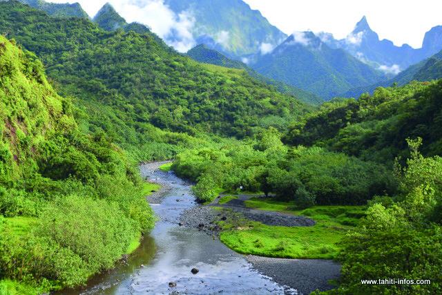 Un comité de pilotage pour le développement économique du centre de Tahiti
