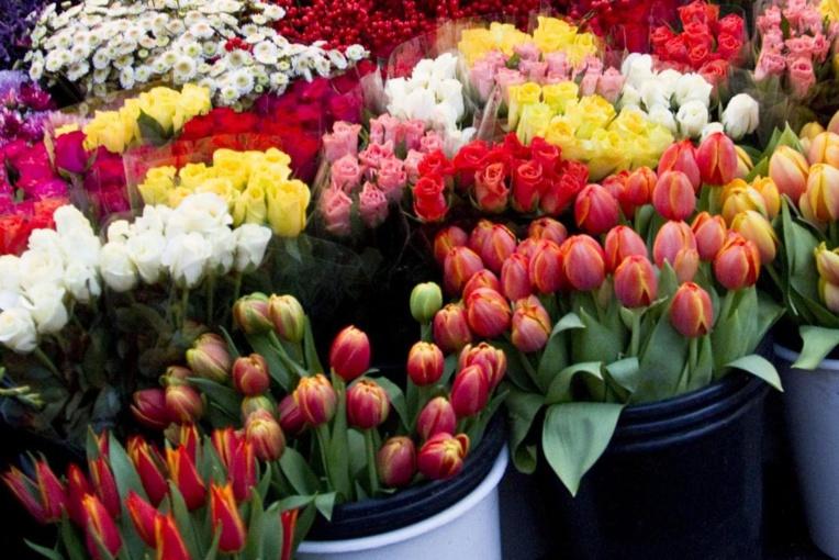 11 695 fleurs importées pour la fête des mères