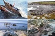 Le Sénat unanime pour inscrire le préjudice écologique dans le code civil