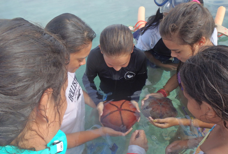 Les élèves de 6ème 2 du collège de Bora Bora, sensibilisés à leur patrimoine marin.