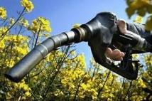"""Les biocarburants s'appelleront désormais des """"agrocarburants"""""""