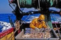 Réforme de la pêche: l'UE veut restaurer les stocks de poissons