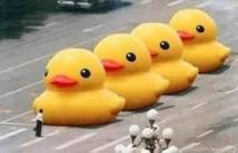 """Les mots """"gros canard jaune"""" censurés en Chine"""