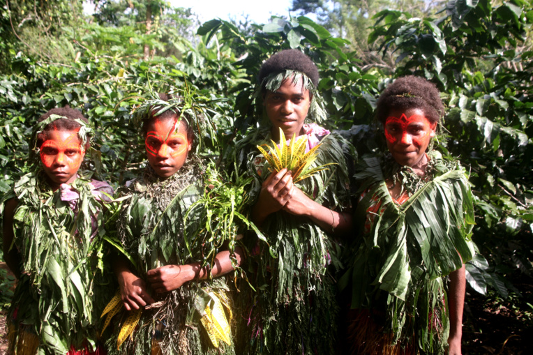 Ces jeunes guides font découvrir aux visiteurs leur plantation de caféiers.