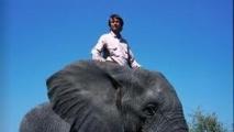 En visite au Gabon, Nicolas Hulot défend la cause des éléphants