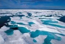 Le réchauffement des océans responsable de la fonte des glaces antarctiques