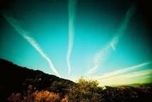 Et si demain les avions volaient avec du sucre ?