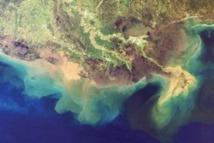 """Le Golfe du Mexique pourrait voir se former une """"zone morte"""" record en 2013"""