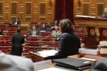Le Parlement a définitivement adopté le texte autorisant la recherche sur l'embryon