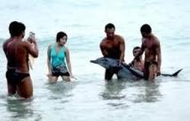 Chine: Des touristes critiqués pour leur manque de respect de la faune marine