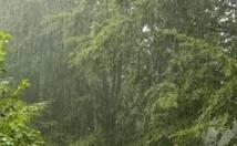 """En Inde, le déluge s'abat chaque année sur le village """"le plus humide de la Terre"""""""