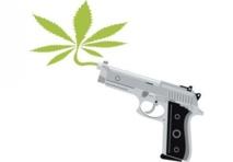 La ville de Mexico ouvre le débat sur la légalisation du cannabis