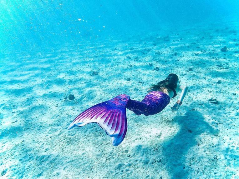 """Le """"mermaiding"""" proposé à Moorea"""
