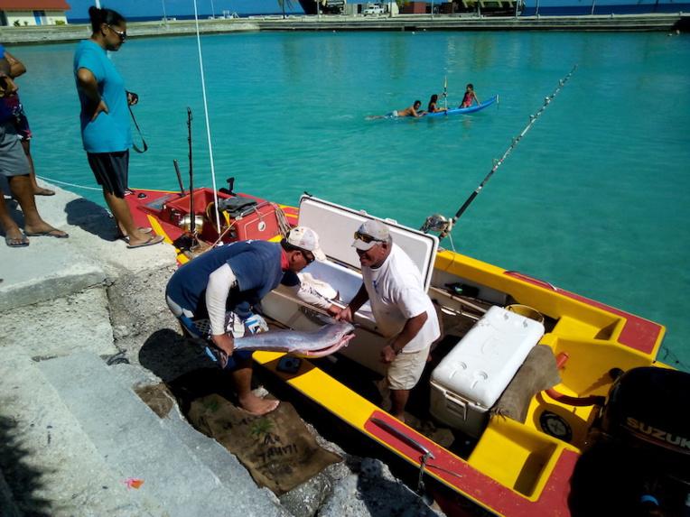 Pas question de trainer au concours de pêche de Hao