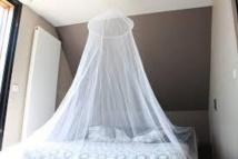 Des moustiquaires traitées avec de l'insecticide efficaces pour éradiquer la filariose