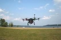Le Canada recourt aux drones pour effrayer les oies