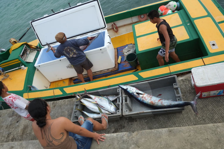 Baisse du prix du carburant pour les pêcheurs