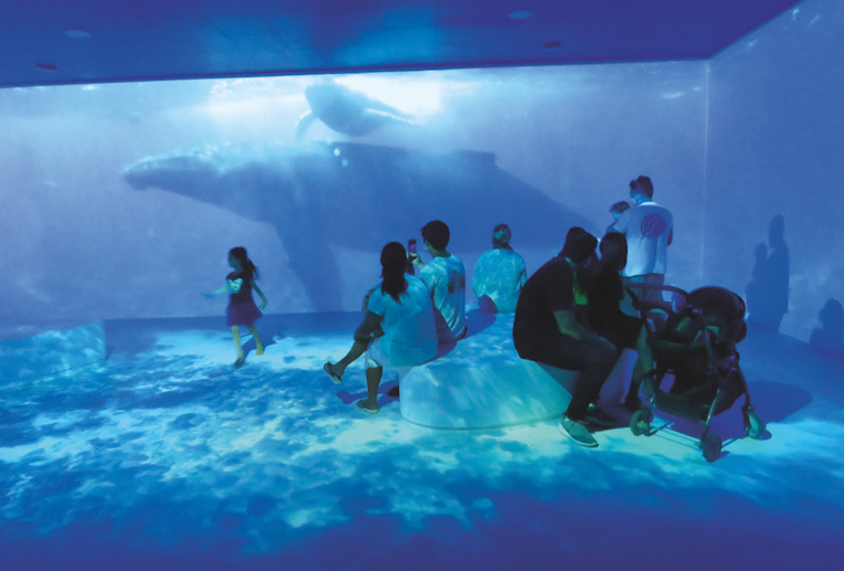 Te Fare Natura propose de nombreux espaces à ses visiteurs, comme ici au Naturascope qui les plonge au cœur des écosystèmes polynésiens.