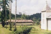 Saül, ce petit village d'Amazonie française qui résiste aux chercheurs d'or
