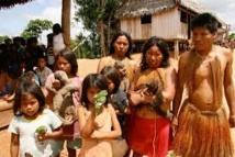 Des tablettes éducatives pour des indiens de l'Amazonie colombienne