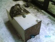 Inde : un coffre avec 300.000 dollars retrouvé dans les ruines d'une ville inondée