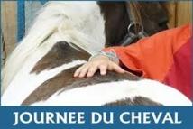 Journée du Cheval : plus de 2.600 manifestations dimanche