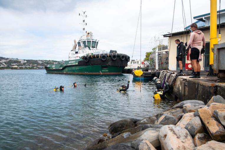 14 mètres cube de déchets sortis du port et de la base navale