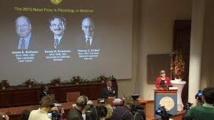 Randy Schekman et James Rothman et  l'Allemand Thomas Südhof: prix Nobel de médecine