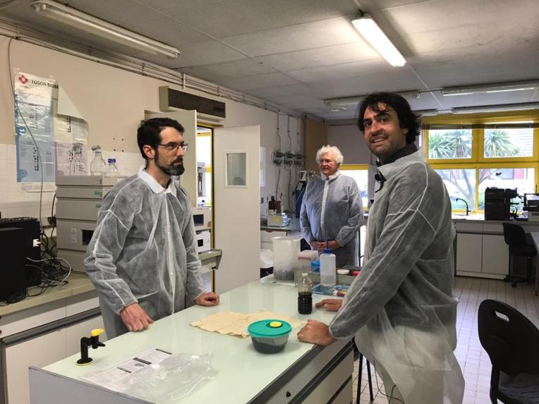 Le partenariat avec le centre d'étude et de valorisation des algues a été fondamental dans le développement de Sargasse Project.