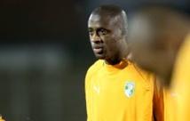 Le footballeur Yaya Touré s'engage pour la survie des éléphants