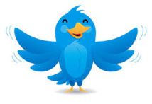 """Twitter plus """"visuel"""" avec l'affichage direct de photos et vidéos"""
