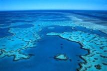 Des administrateurs de la Grande Barrière de Corail liés à l'industrie minière