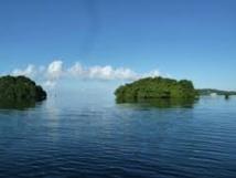 Le Pacifique au chevet de son environnement