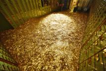 Une salle avec huit millions de pièces de cinq centimes en vente en Suisse