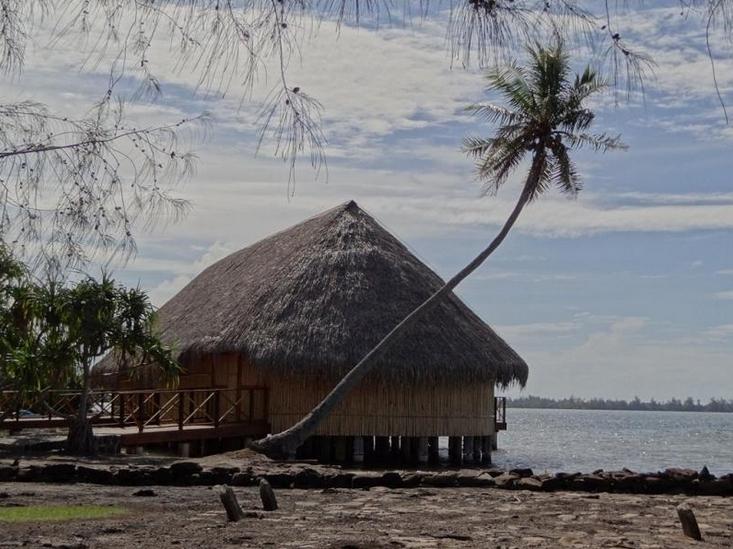 Histoire et culture polynésienne : il était une fois nos « fare » traditionnels